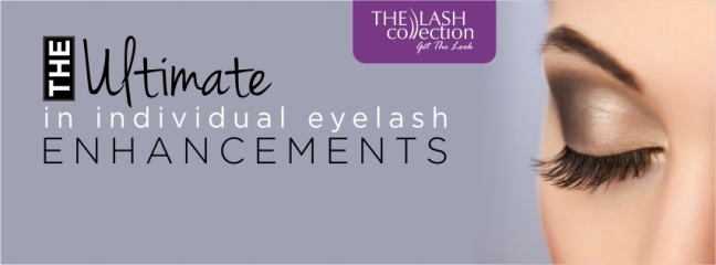 lash-collection-training-picture